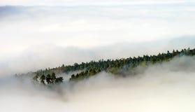 Grote bewolking over de Elzas Mening vanaf bovenkant van de berg stock afbeelding