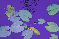 Grote bladeren op het water stock illustratie