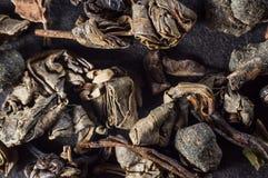 Grote bladeren van droge groene thee in een samengeperste staat op een donkere achtergrond stock afbeeldingen