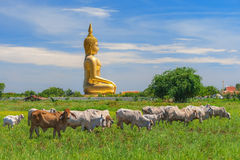 Grote Boedha in Thailand Stock Afbeelding