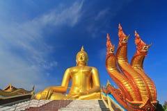 Grote Boedha in Wat Muang, Thailand Stock Foto's