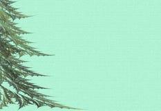 Grote bont-bomen op een groene achtergrond Stock Foto