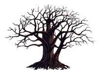 Grote boom Stock Illustratie