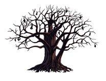 Grote boom Vector Illustratie