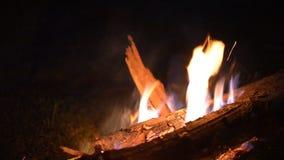 Grote brand van een brand op een achtergrond van wilde aard met stenen Close-upreis, avonturen hete vlam Een comfortabele avond b stock footage