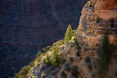 Grote Canion, Arizona Stock Afbeelding