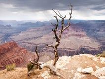 Grote Canion, de V.S. Stock Foto