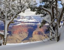 Grote Canion in de Winter 4 Royalty-vrije Stock Fotografie