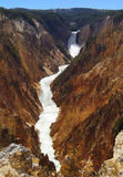 Grote Canion van Nationaal Park Yellowstone Stock Foto