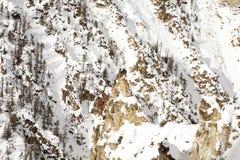 Grote Canion van Yellowstone Stock Afbeeldingen