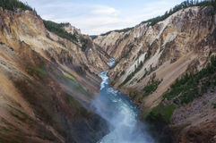 Grote Canion van Yellowstone Stock Foto