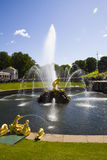 Grote cascade bij Pertergof-Paleis Heilige-Petersburg, Rusland Stock Afbeeldingen