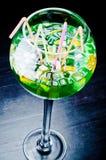 Grote cocktail voor vrienden Royalty-vrije Stock Fotografie