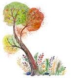 Grote de herfstboom Stock Foto's