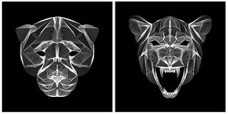 Grote de katten hoofd zwart-witte kleur van de Lineartillustratie Stock Afbeeldingen