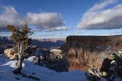 Grote de winterscène van de Canion Stock Foto's
