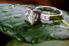 Grote diamantring Royalty-vrije Stock Foto
