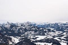 Grote die bergen met sneeuw en bomen worden behandeld royalty-vrije stock afbeeldingen
