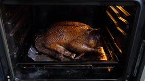 Grote die eend in de oven wordt gebakken stock videobeelden