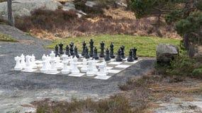 Grote die schaakcijfers buiten, door bomen worden omringd stock foto's