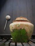 Grote die waterkruik met mos wordt behandeld Royalty-vrije Stock Foto's