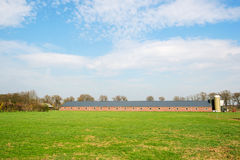 Grote dierlijke schuur in landschap Royalty-vrije Stock Fotografie
