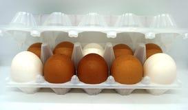 Grote eieren stock afbeeldingen