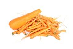 Grote en fijne wortelen Royalty-vrije Stock Foto