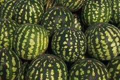 Grote en groene watermeloenen stock foto's