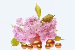 Grote en kleine eieren in gouden kleur dichtbij sakurabloemen Stock Afbeelding