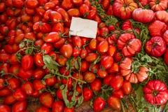 Grote en kleine rode tomaten stock foto