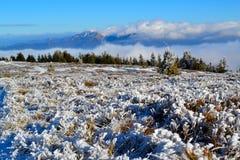 Grote Fatra-bergen - zonnige dag in de vroege winter Stock Fotografie