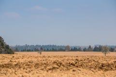 Grote gebieden in het midden van het Duitse platteland met heuvels, bossen en weiden royalty-vrije stock afbeeldingen