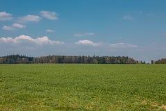Grote gebieden in het midden van het Duitse platteland met heuvels, bossen en weiden royalty-vrije stock foto's