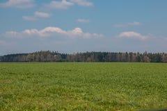 Grote gebieden in het midden van het Duitse platteland met heuvels, bossen en weiden stock foto's