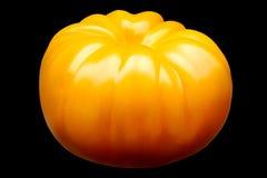 Grote gele die tomaat op zwarte achtergrond wordt geïsoleerd Royalty-vrije Stock Foto's