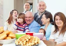 Grote gelukkige drie generatiesfamilie stock fotografie
