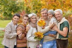 Grote gelukkige familie die pret hebben stock afbeeldingen