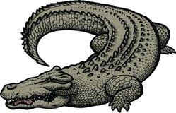Grote gevaarsalligator royalty-vrije illustratie