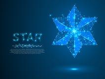 Grote, gewaagde Volumetrische ster met zes stralen Veelhoekige ruimte lage poly met het verbinden van punten en lijnen Wireframe  vector illustratie
