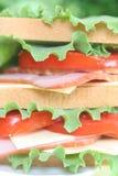 Grote gezonde sandwich Royalty-vrije Stock Foto's