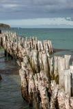 Grote golfbreker, 3000 boomstammen om de stad van de getijden, het strand ‰ van Strandde te verdedigen l 'Ã ventail in Saint Malo royalty-vrije stock foto's