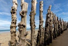 Grote golfbreker, 3000 boomstammen om de stad van de getijden, het strand ‰ van Strandde te verdedigen l 'Ã ventail in Saint Malo royalty-vrije stock afbeeldingen
