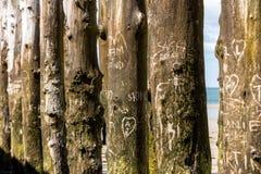 Grote golfbreker, 3000 boomstammen om de stad van de getijden te verdedigen stock fotografie