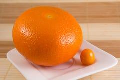 Grote grapefruit en kleine kruisbes Royalty-vrije Stock Afbeeldingen