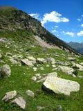 Grote grijze granietrotsen, weide Royalty-vrije Stock Foto