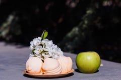 Grote groene Apple en tak van bloeiend Apple in openlucht stock afbeelding