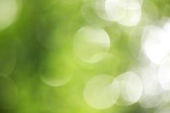 Grote groene bokeh Stock Foto
