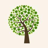 Grote groene ecologieboom Royalty-vrije Stock Fotografie