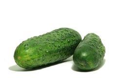Grote Groene komkommer twee Royalty-vrije Stock Fotografie